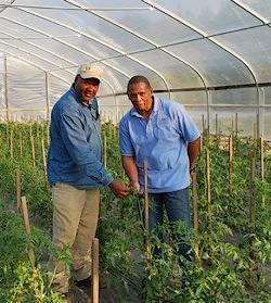 Snells farming in Alabama hoop house- USDA