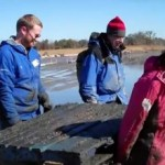 oyster restoration by Nature Conservancy