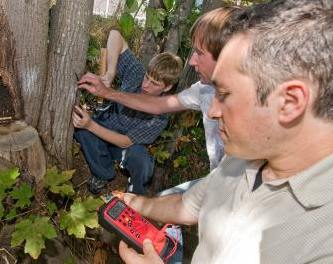 UW photo of electrical research with trees