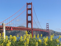 Golden Gater bridge in spring