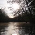 river reflecting sun