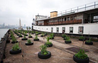 Ellis Island ferry is now a houseboat