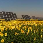 Solar farm - Photo by Convergence Energy, Wisconsin