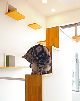 cat house by Fauna Plus DeSIGN