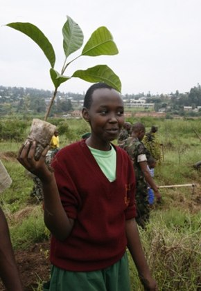 tree planting in Rwanda - UNEP photo