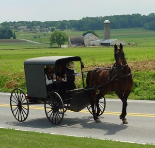 Amish buggy in Lancaster PA, by Utente-TheCadExpert GNU