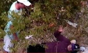 Ravine fallen dad - MSNBC video clip