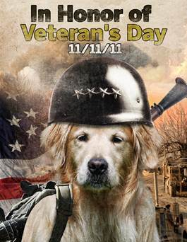 Veterans Day Dog Bless You