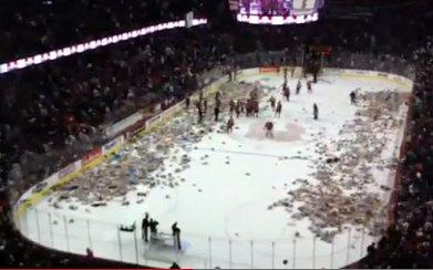 Hockey game Teddy Bear Toss