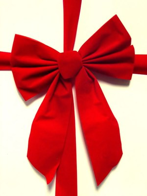 Red bow -Image by ppdigital Morguefile