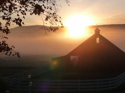 farm in mist
