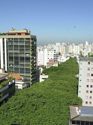 Brazil's tree-lined Rua Gonalo de Carvalho -Photo by clicrbs.com.br