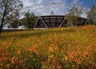 London Olympic stadium flowers