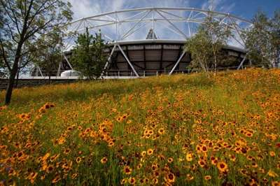 London Olympic stadium flowers