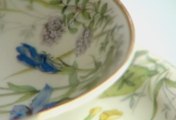 Dishes returned to holocaust survivor