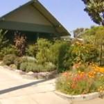 Farming home in suburbia -ABC video snapshot