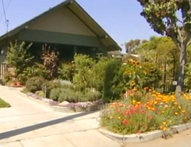 Farming home in suburbia -ABC video snapshot