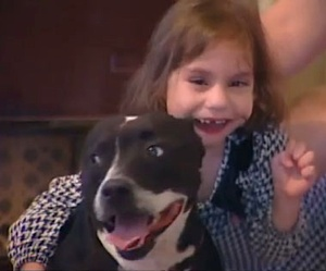 Girl gets therapy dog back - KSNVideo