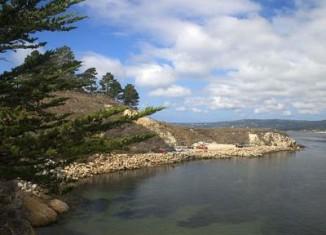 Point Lobos State Reserve-Sean OFlaherty-cc