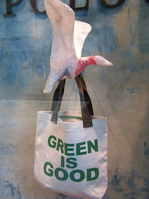 Green is Good and canvas bags too