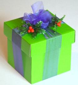 gift-green-anon-morguefile