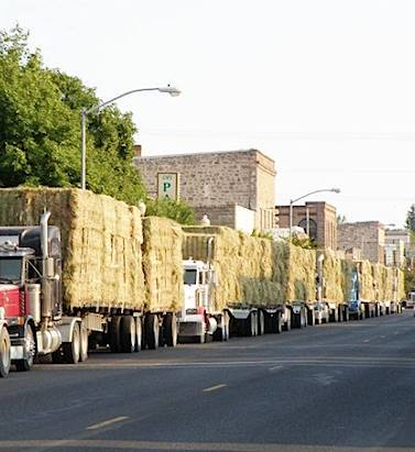 Truckers with Hay line street -by StephanieFalck