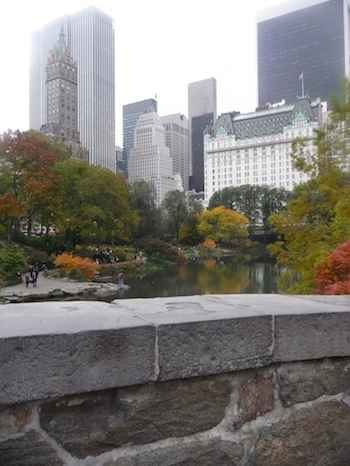 Central Park bridge