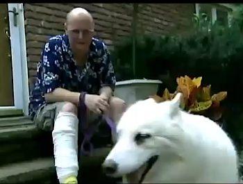 Dog loves owner in hospital