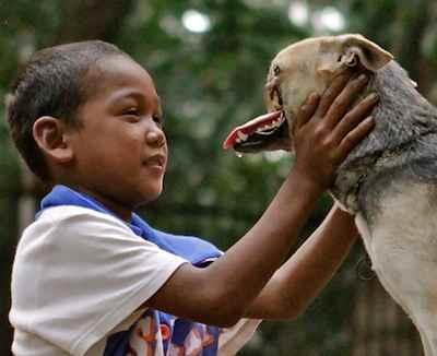 snoutless filipino dog hero - family photo
