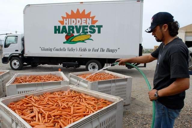 hidden-harvest-Coachella-Calif-FB