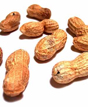 peanuts in shell-Cohdra Morguefile