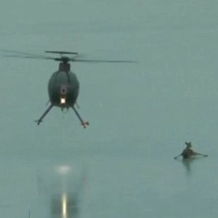 helicopter blows deer