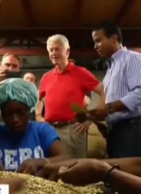 Haiti coffee plant Clinton