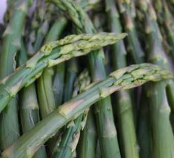 asparagus by Jason Webber via Morguefile