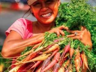 carrot bunch lady-SunStar
