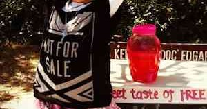 lemonade stand against slavery
