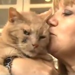 cat sniffs-out cancer - video snapshot