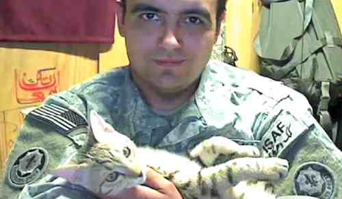 soldier Jesse Knott with feral Afghan cat