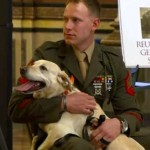 soldier with dog partner