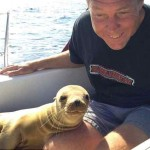seal boards vessel for cuddle
