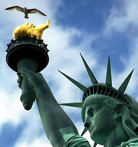 Statue of Liberty CU w gull-David Paul Ohmer-CC