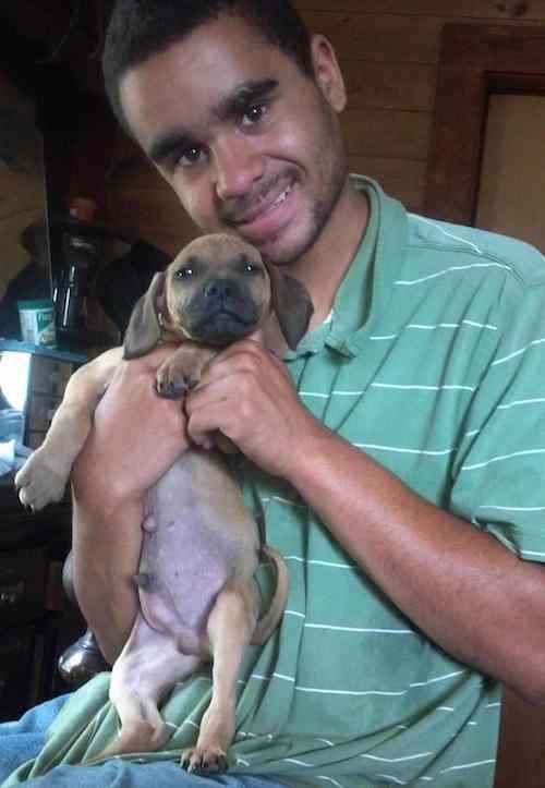 puppy helper Bubbas Animal Pride