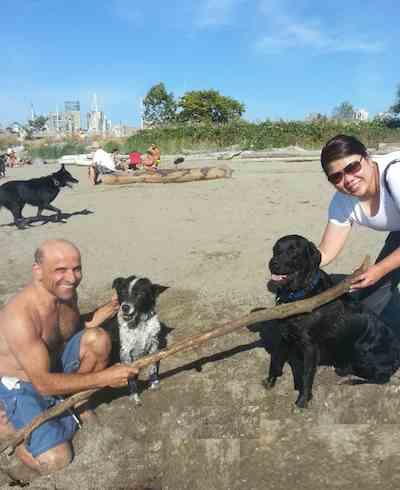 dog saves collie Vancouver
