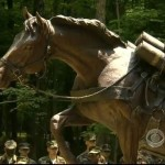horse Marine-sgt reckless-statue