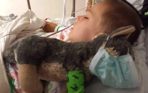 Hospitalized boy and plush wolf-JoshuaWade-FB