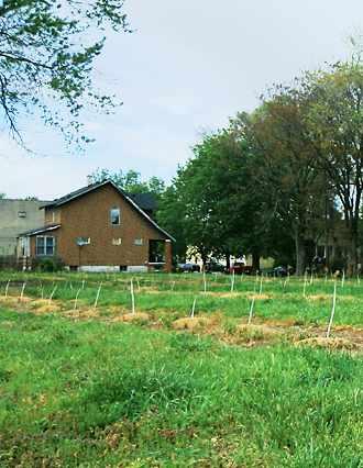 Detroit Hartz Farms photo