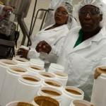 Factory in Haiti-peanut nutrition-ParntnersInHealth