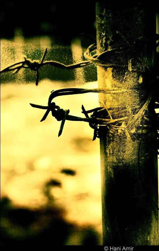 Suffering Flickr-CC-Hani Amir