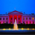 White House bathed in pink-by Sonya Hebert