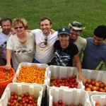 produce-Transition Sarasota Suncoast Gleaning Project-CC